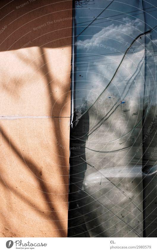sprunghaft Ast Menschenleer Ruine Mauer Wand Fenster Fensterscheibe Glas alt kaputt Verfall Zeit Zerstörung Farbfoto Außenaufnahme abstrakt Tag Licht Schatten