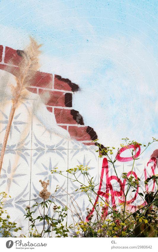 wandmalerei Kunst Himmel Pflanze Wildpflanze Mauer Wand Dekoration & Verzierung Fliesen u. Kacheln Schriftzeichen Graffiti Farbe Inspiration Kreativität