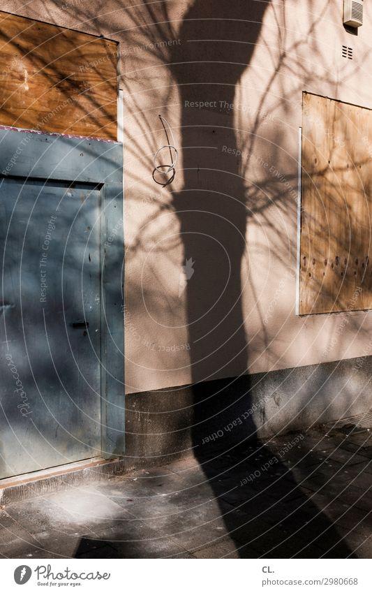 schattierung Baustelle Kabel Schönes Wetter Baum Menschenleer Haus Gebäude Mauer Wand Fenster Tür Wege & Pfade alt ästhetisch dreckig authentisch kaputt trist