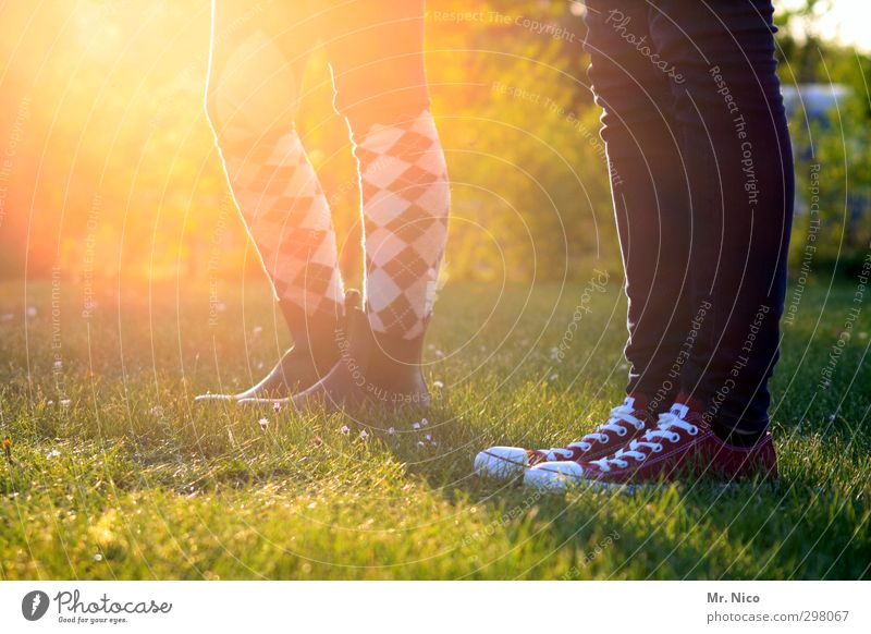 trendsetter Mensch Kind Natur Jugendliche Sommer Umwelt Wiese feminin Gras Frühling Stil Beine Garten Mode warten wandern