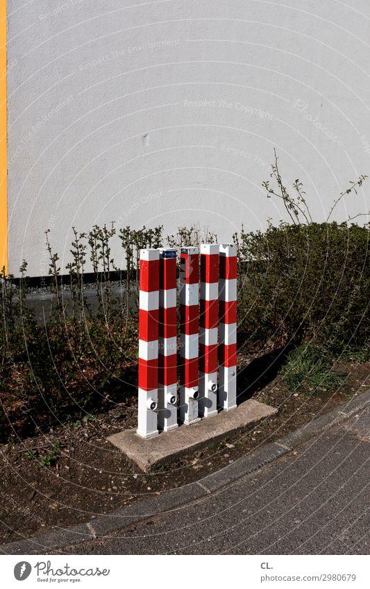 poller rotweiß Pflanze Hecke Mauer Wand Verkehr Verkehrswege Wege & Pfade Barriere Poller trist Zufriedenheit gleich Schutz Sicherheit 5 Farbfoto Außenaufnahme