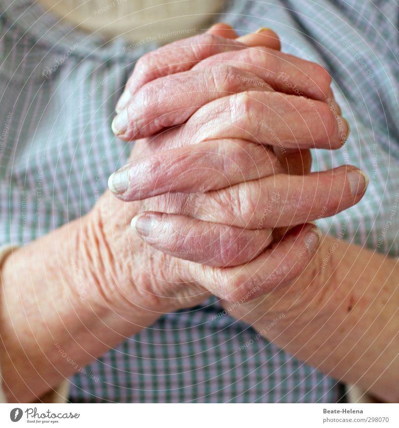 Verdienter Ruhestand Frau blau alt Hand ruhig Erholung Senior Leben Gesundheit Arbeit & Erwerbstätigkeit rosa Zufriedenheit warten Häusliches Leben Finger