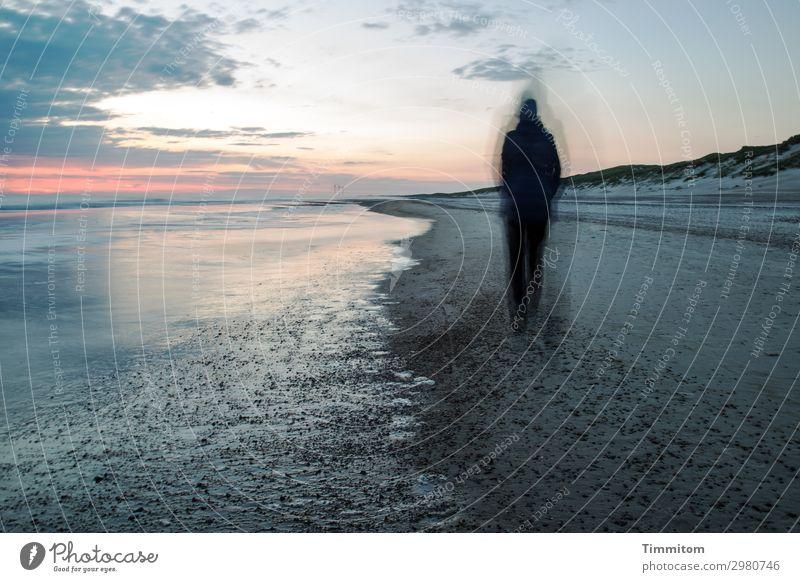 Nachtwanderung Ferien & Urlaub & Reisen Mensch Frau Erwachsene 1 Umwelt Natur Urelemente Sand Wasser Himmel Nachthimmel Strand Nordsee Dänemark gehen dunkel