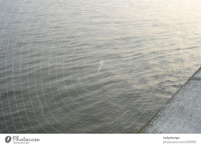 themse blau Wasser Winter grau Stimmung ästhetisch Schönes Wetter Fluss Unendlichkeit Flussufer Stadtzentrum silber London Themse Stadt