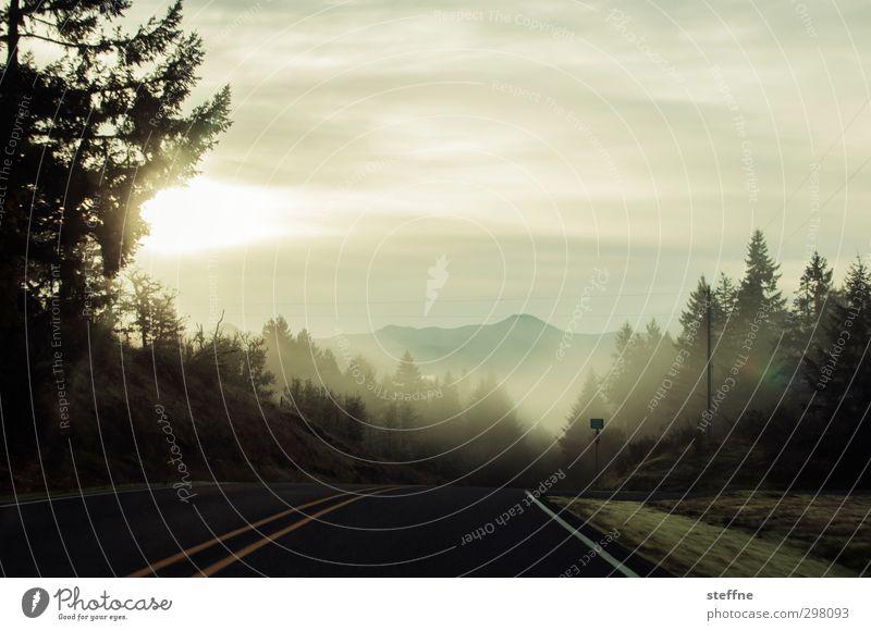 Mist Umwelt Natur Landschaft Wolken Nebel Baum Wald Berge u. Gebirge Straße Erwartung ruhig Farbfoto