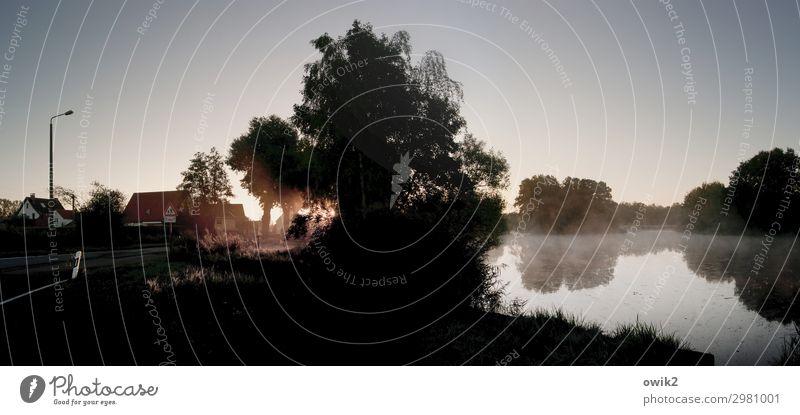 Lausitzmorgen Umwelt Natur Landschaft Wolkenloser Himmel Herbst Nebel Baum Sträucher Teich See Dorf Haus leuchten Windstille friedlich Sonnenaufgang ruhig
