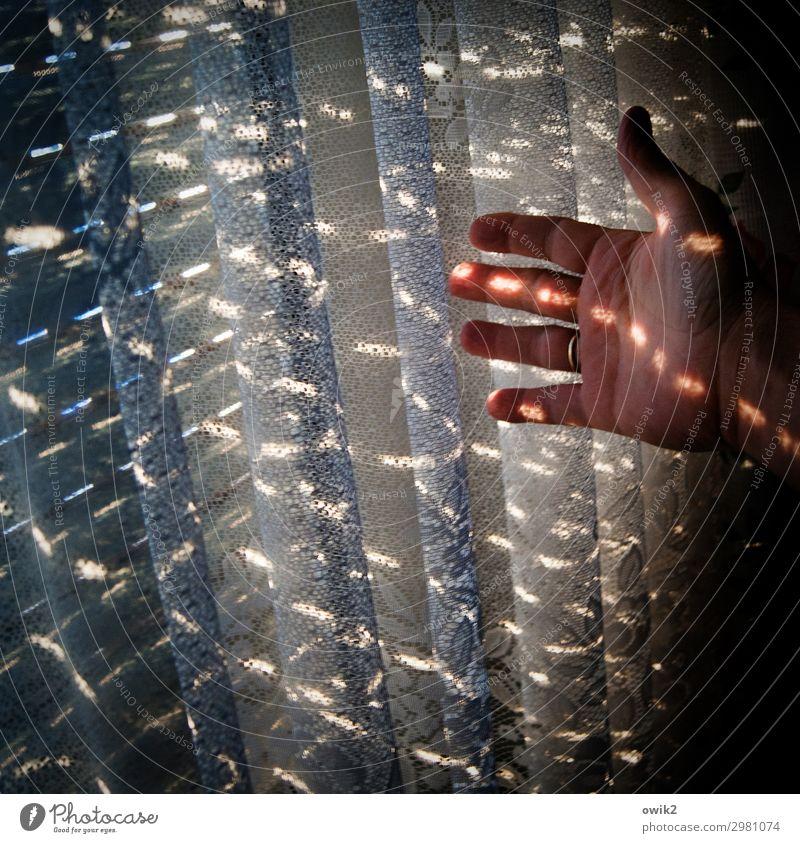 Sichtvermerk Hand Finger Fenster leuchten Gardine Jalousie zeigen Lichtpunkt Farbfoto Innenaufnahme Detailaufnahme Muster Strukturen & Formen Textfreiraum links