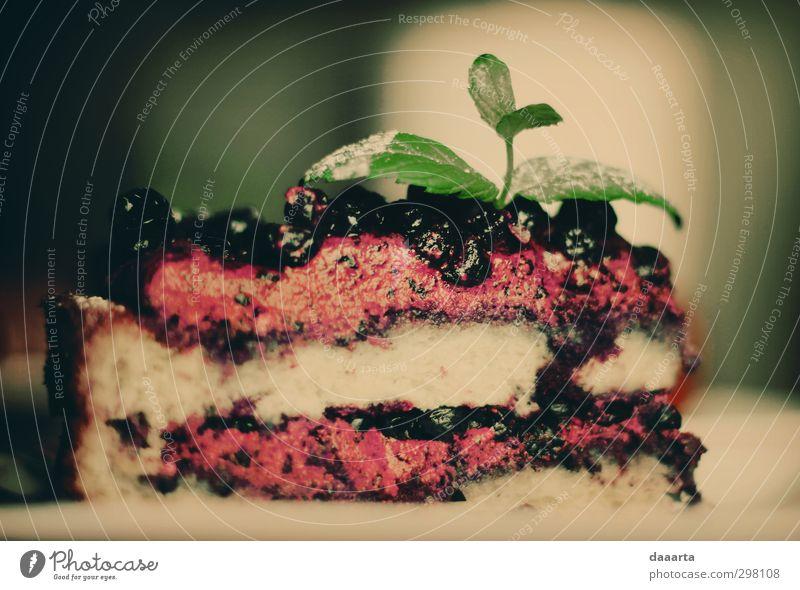 Heidelbeerkuchen Lebensmittel Kuchen Dessert Süßwaren Kräuter & Gewürze Slowfood Muttertag Geburtstag Küche Essen glänzend genießen Freundlichkeit gut