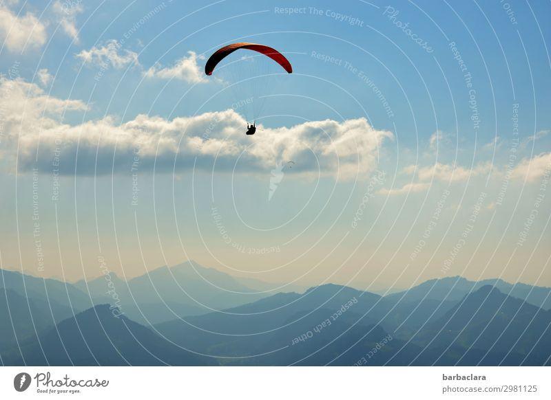 luftig | über den Wolken Sport Gleitschirmfliegen 1 Mensch Natur Urelemente Luft Himmel Klima Schönes Wetter Alpen Berge u. Gebirge Gipfel fantastisch
