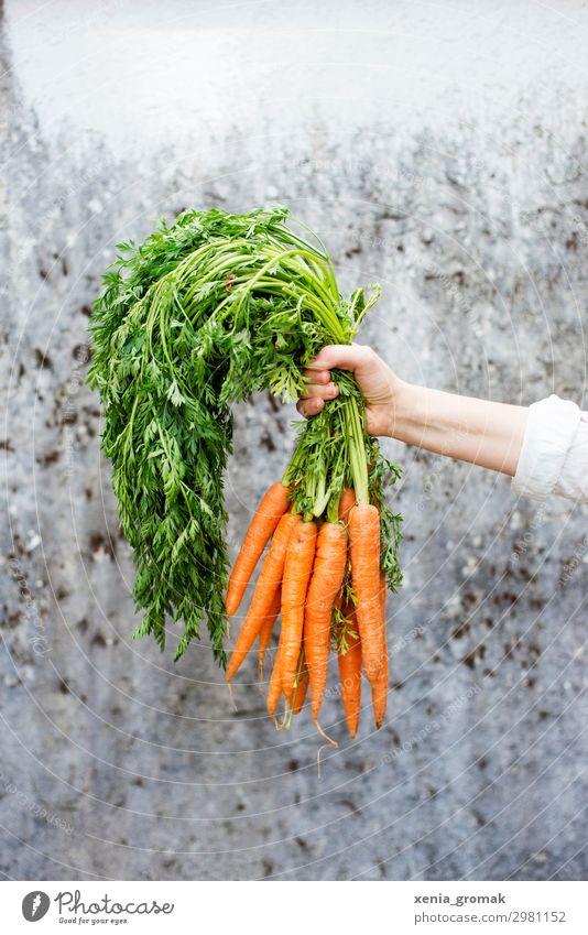 Möhren Lebensmittel Ernährung Picknick Bioprodukte Vegetarische Ernährung Diät Lifestyle kaufen Wellness harmonisch Wohlgefühl Zufriedenheit nachhaltig