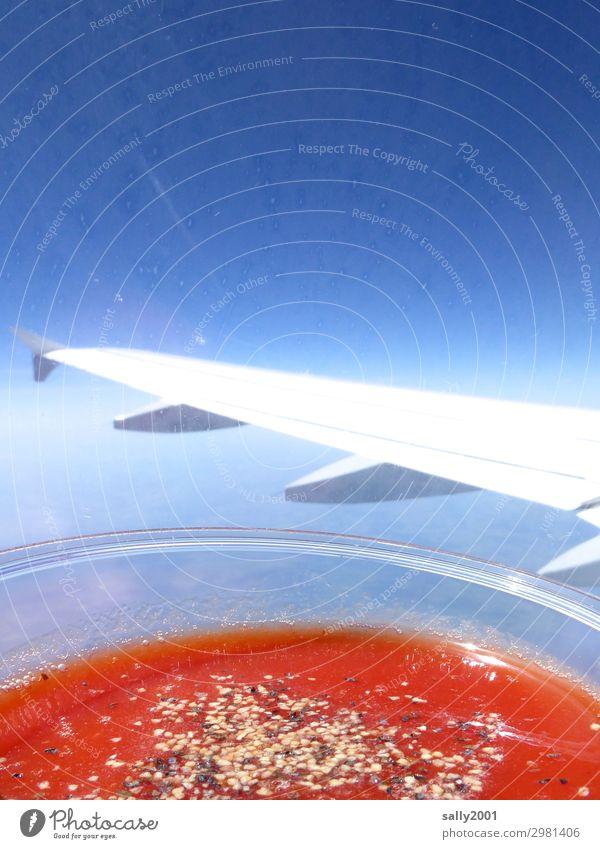 Tomatensaft bitte... Getränk Saft Wolkenloser Himmel Luftverkehr Flugzeug Passagierflugzeug im Flugzeug Flugzeugausblick Tragfläche fliegen trinken Gesundheit