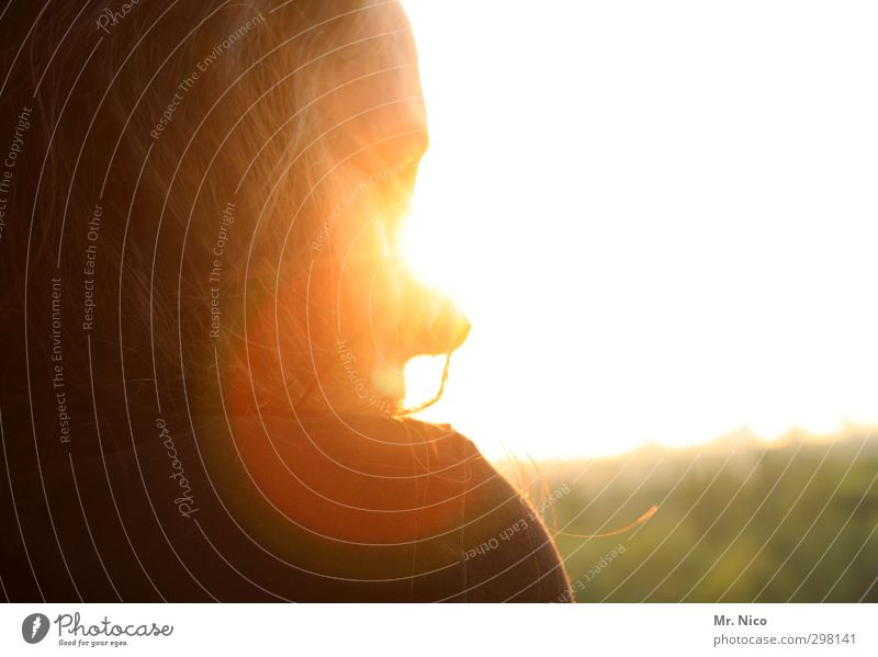 geblendet feminin Frau Erwachsene Haare & Frisuren Gesicht 1 Mensch 30-45 Jahre Sonne Schönes Wetter Wärme beobachten Schulter blenden Frühlingsgefühle gold