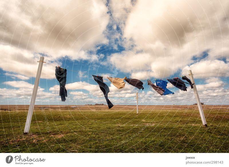 Wäschetrockner Himmel blau grün weiß Sommer Landschaft Wolken Ferne gelb Wiese Horizont Wind Lifestyle Insel Schönes Wetter T-Shirt