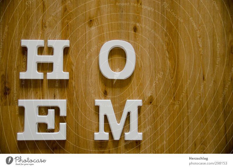 home sweet home Reichtum Wohnung Haus Traumhaus Hausbau Innenarchitektur Raum Wohnzimmer Erholung Fernsehen schauen genießen schlafen Häusliches Leben Glück