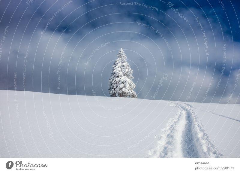 Schneeweg Himmel Natur Ferien & Urlaub & Reisen blau Baum Landschaft Wolken Winter kalt Berge u. Gebirge Wege & Pfade Freiheit Eis Wetter Tourismus