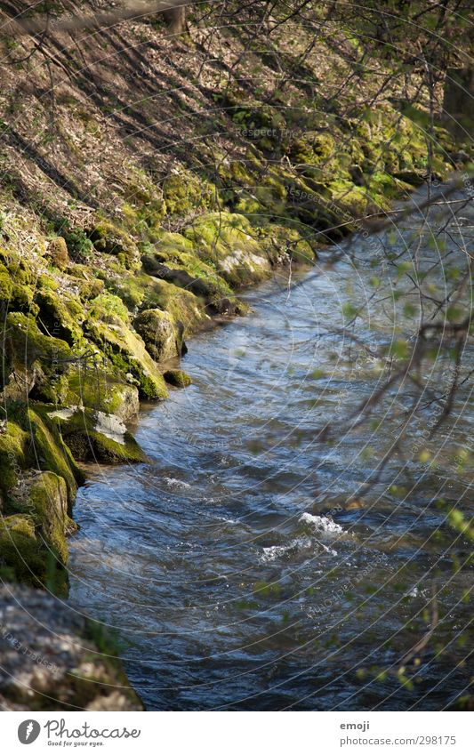 plätschern Umwelt Natur Landschaft Frühling Schönes Wetter Flussufer Bach nass natürlich blau grün Farbfoto Außenaufnahme Menschenleer Tag