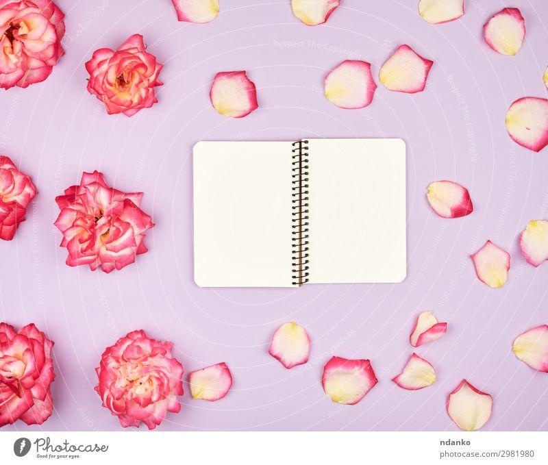 offenes Notizbuch mit weißen leeren Seiten Design Dekoration & Verzierung Feste & Feiern Hochzeit Geburtstag Arbeitsplatz Business Buch Pflanze Blume Blüte