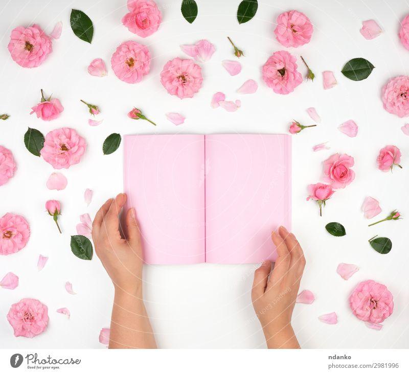 zwei weibliche Hände, die den offenen Notizblock halten Feste & Feiern Valentinstag Muttertag Hochzeit Geburtstag Schule lernen Büro Business Mensch Frau