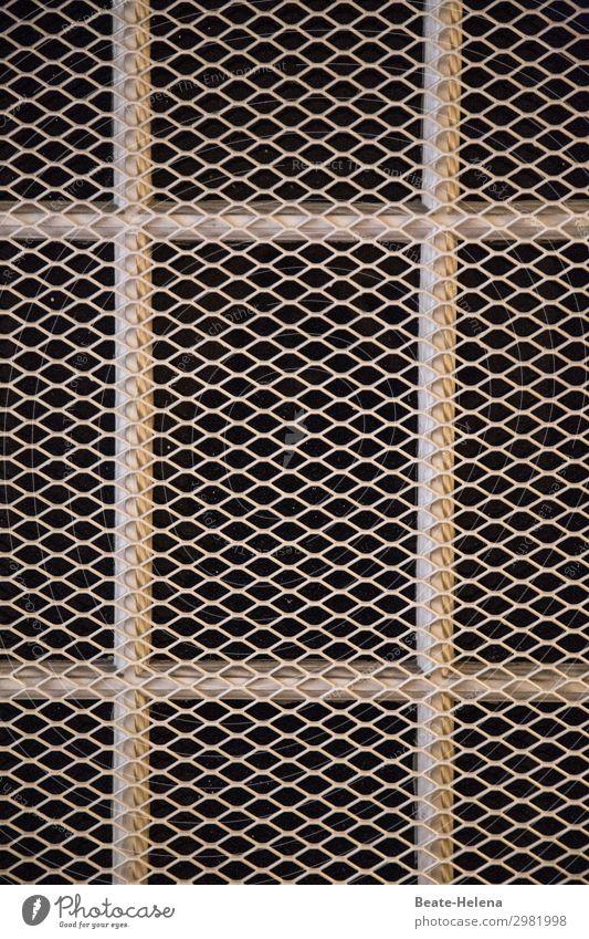 Gesicherte Zone (2) Lifestyle Keller Arbeitsplatz Handwerk Baustelle Fenster Gitter Schutz Fensterfront Metall Netz Sperrzone festhalten bedrohlich dunkel eckig
