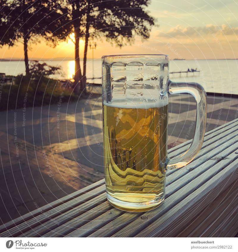 Glas Bier zum Sonnenuntergang am Steinhuder Meer Ferien & Urlaub & Reisen Natur Sommer Landschaft Erholung Lifestyle Wärme Küste Deutschland Freiheit See