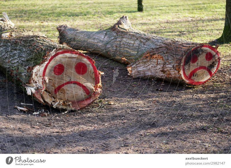 gefällte Baumstämme mit traurigem Smiley Graffiti Umwelt Natur Landschaft Park Wald Zeichen Traurigkeit Trauer Baumstamm gefallen Holz Holzwirtschaft