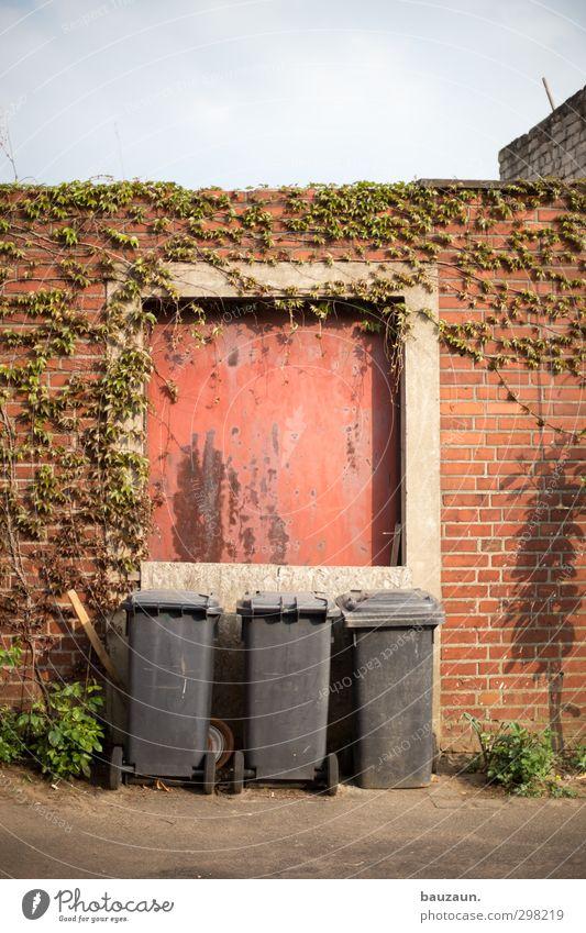 ut köln | ehrenfeld | alles müll. Himmel Stadt Pflanze rot Wolken Wand Wege & Pfade Mauer grau Stein Fassade Tür dreckig Häusliches Leben Beton Sträucher
