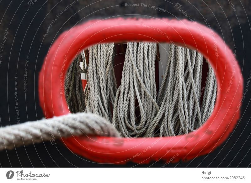 Blick durch ein Bullauge in der Schiffswand, man sieht viele aufgehängte Seile Schifffahrt Segelschiff Bordwand festhalten hängen authentisch außergewöhnlich