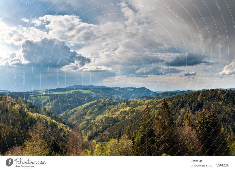 Schwarzwald Himmel Natur schön Sommer Pflanze Landschaft Wolken Wald Umwelt Ferne Berge u. Gebirge Leben Stimmung Klima wandern Tourismus