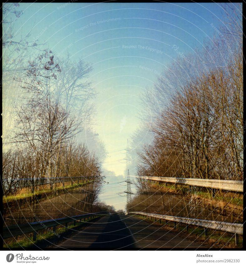 Doppelbelichtung - eine Straße mit Bäumen die zur Bücke führt Umwelt Natur Landschaft Pflanze Luft Wolkenloser Himmel Herbst Schönes Wetter Baum Wald Hügel Dorf