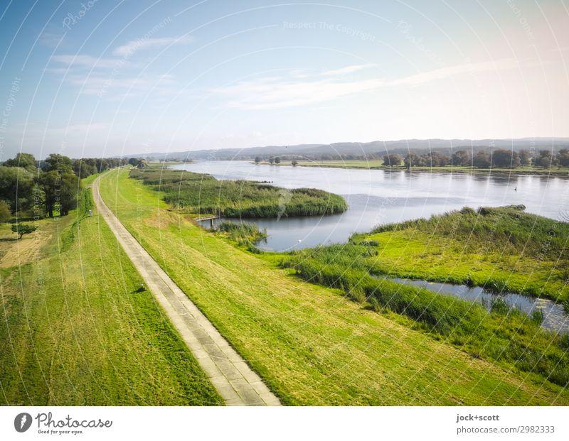 Ausblick auf den Fluss (Oder) Landschaft Wolken Sommer Schönes Wetter Wiese Damm Wege & Pfade authentisch Ferne Horizont Idylle Natur Flussufer Kulturlandschaft