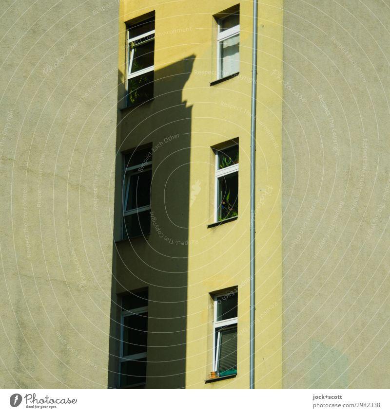 Brandwand mittenmang Stadthaus Fassade Fenster Brandmauer eckig Wärme gelb Schutz Verschwiegenheit Ordnung Stil Symmetrie Regenrohr Hinterhof Schattenspiel
