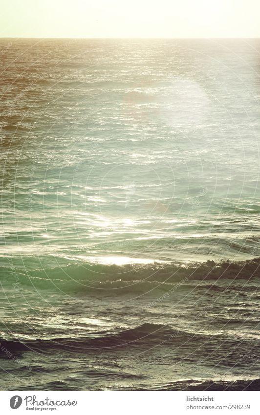 U-Boote, Haie und Meerjungfrauen Umwelt Natur Urelemente Wasser Horizont Sonne Sonnenaufgang Sonnenuntergang Sonnenlicht Schönes Wetter Küste Nordsee Ostsee