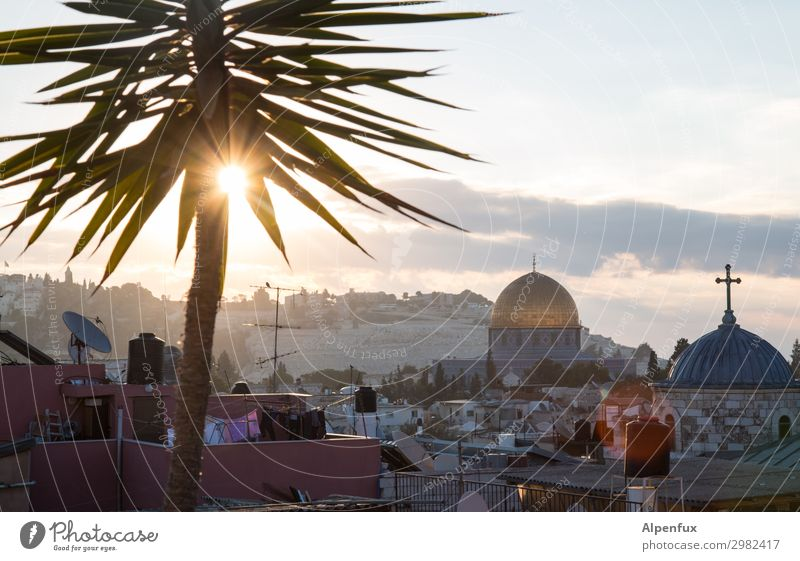 Guten Morgen Jerusalem Palästina Stadtzentrum Altstadt Kirche Sehenswürdigkeit Wahrzeichen Denkmal Felsendom Tempelberg Glück Lebensfreude Abenteuer Beginn