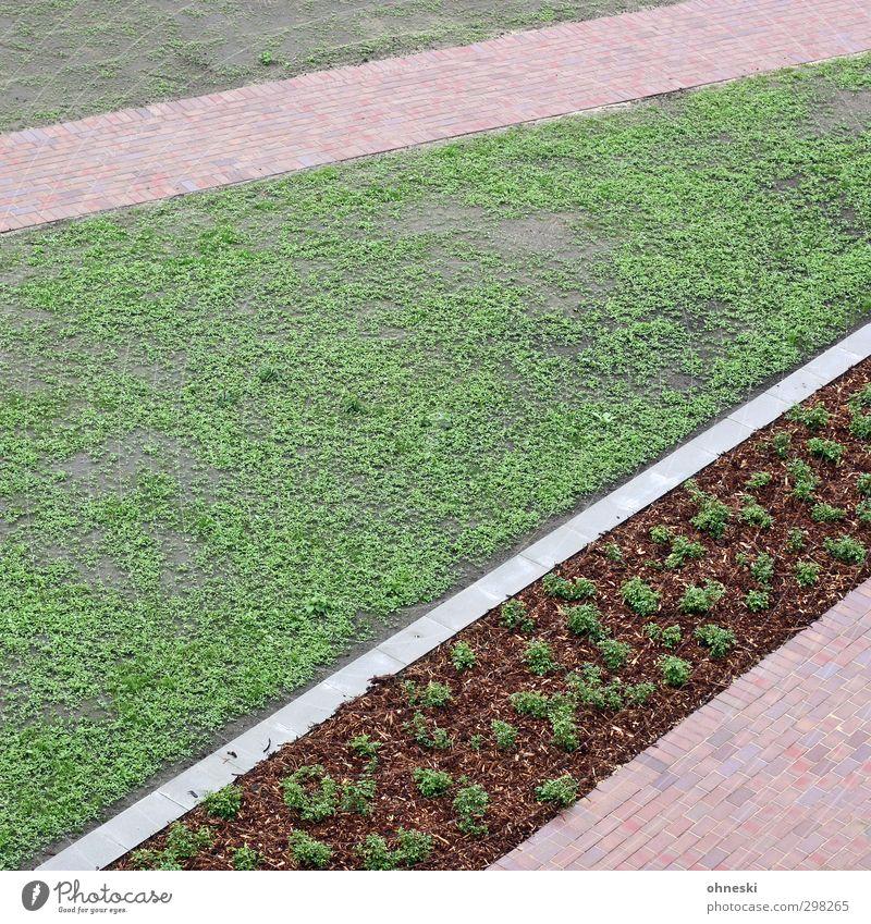 Gartenbaukunst Gras Beet Park Wiese Wege & Pfade Ordnung Farbfoto Außenaufnahme abstrakt Muster Strukturen & Formen Menschenleer Textfreiraum links