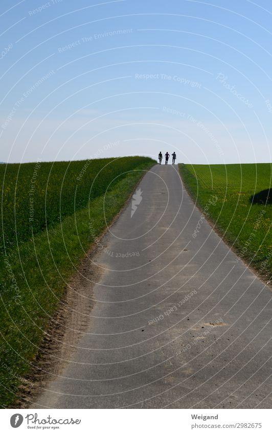 Weggefährten harmonisch Zufriedenheit Sinnesorgane Geburtstag Erwachsene 3 Mensch 18-30 Jahre Jugendliche 30-45 Jahre Wind laufen Zusammensein grün trösten