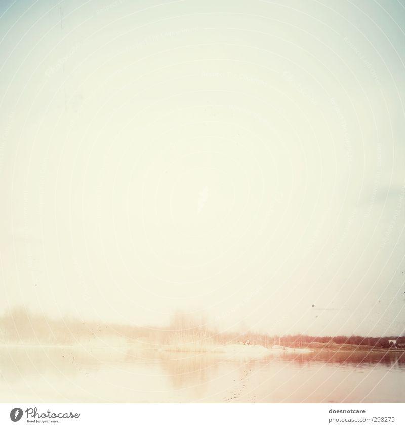 Sommerliche Bucht bei wolkenlosem Himmel Natur Landschaft hell Seeufer Strand Insel Wasser Romantik unklar verwaschen Unschärfe Baum Ferien & Urlaub & Reisen