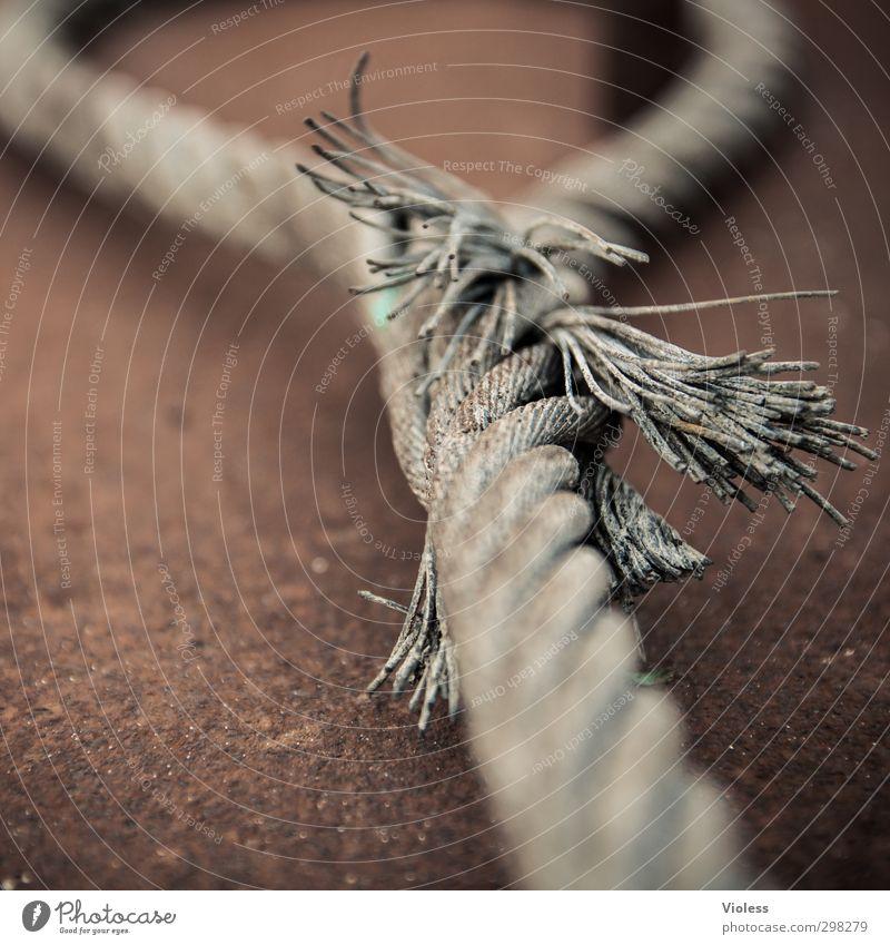 Rømø | ...alles hat ein ende Seil Sicherheit festhalten stark Stahl Knoten geflochten