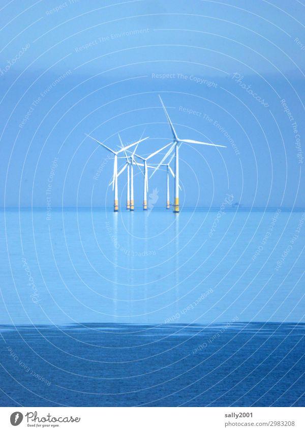 Strom von draußen... Energiewirtschaft Erneuerbare Energie Windkraftanlage Wolkenloser Himmel Schönes Wetter Meer drehen stehen Ferne maritim nachhaltig