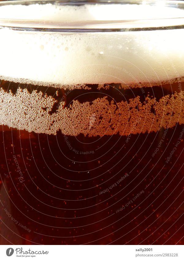 Erfrischung... Getränk Erfrischungsgetränk Alkohol Bier Ale Bierschaum Kohlensäure Glas Flüssigkeit kalt lecker braun Durst perlen dunkles Bier Farbfoto