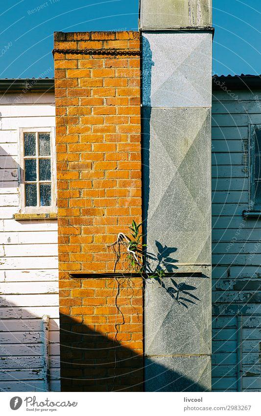 alt Pflanze blau schön weiß Blume Haus Fenster schwarz Straße Architektur Lifestyle Wand Gebäude Mauer orange