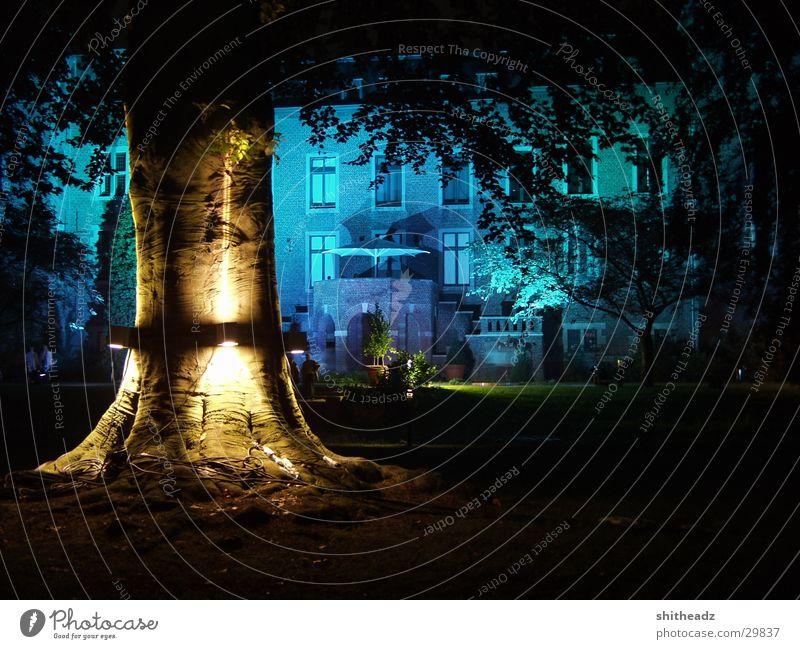 Illumina Licht Baum Nacht mystisch Freizeit & Hobby Istallation Beleuchtung Burg oder Schloss