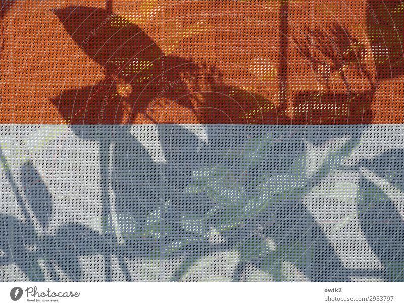 Versteckspiel Pflanze weiß rot Blatt Leben Sträucher Baustelle geheimnisvoll Kunststoff nah verstecken Rätsel unklar Abdeckung verborgen