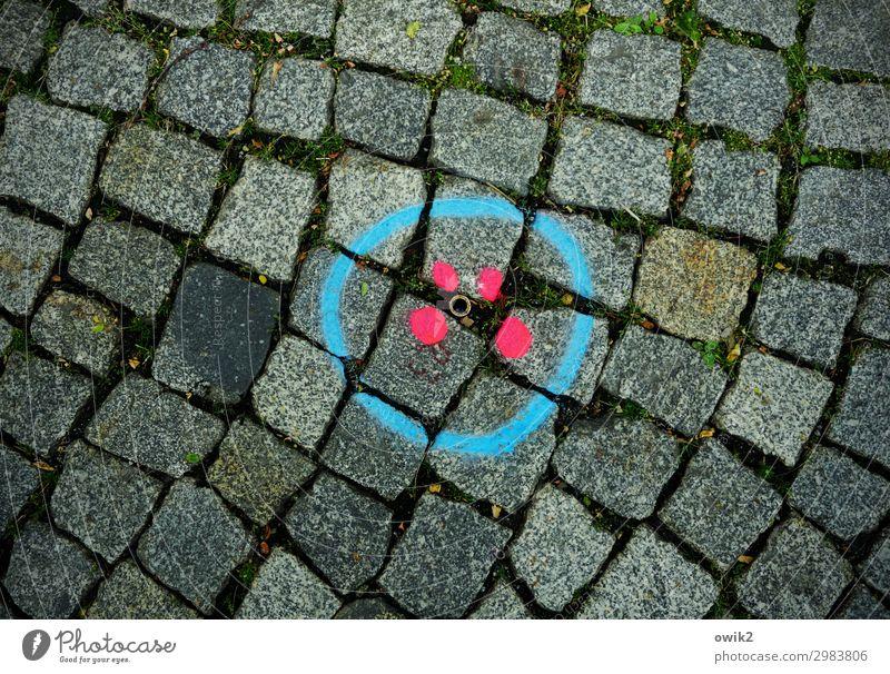 Unter uns Verkehr Straße Kopfsteinpflaster Zeichen Graffiti dunkel einfach rund unten blau rot Ordnung planen Präzision Farbstoff leuchtende Farben Kreis Punkt