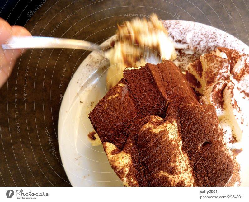 zum Kaffee... Teigwaren Backwaren Dessert Süßwaren Schokolade Tiramisu Kaffeetrinken Italienische Küche Gabel Teller Essen genießen Duft lecker süß braun Gier