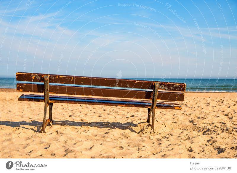 Bank am Ostseestrand Ferien & Urlaub & Reisen Tourismus Sommer Strand Meer Sand hell schön Idylle Parkbank Ruhebank Sandstrand Himmel blau entspannen relaxen