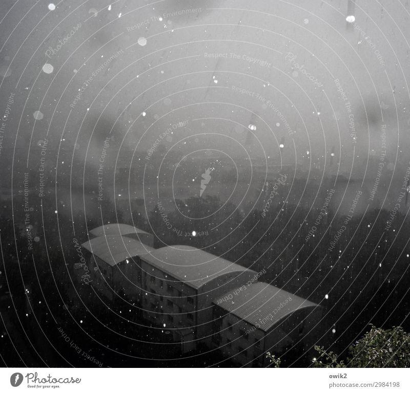 Alles verschwimmt Wassertropfen Winter Regen Kleinstadt Stadtrand Haus Gebäude Dach glänzend kalt viele Unschärfe unklar Rätsel schemenhaft fallen Baum