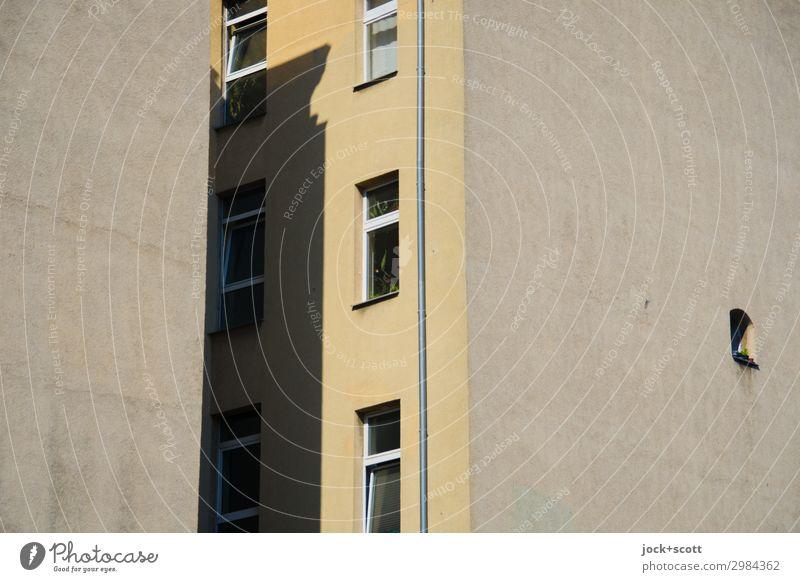 Brandwand Mittelding Stadthaus Fassade Fenster Brandmauer authentisch eckig oben braun Schutz Verschwiegenheit Ordnung Stil Symmetrie Hinterhof Regenrohr