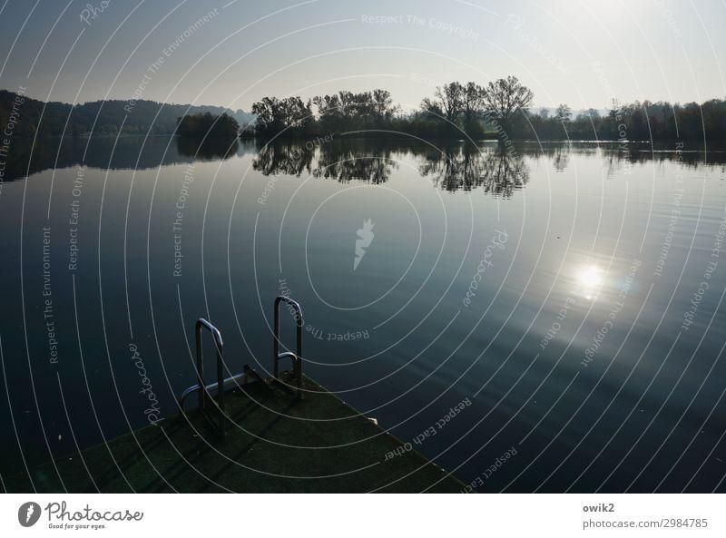 Für Einsteiger Umwelt Natur Landschaft Wasser Wolkenloser Himmel Horizont Herbst Schönes Wetter Baum Flussufer Donau Bayern leuchten Idylle Ferne fließen ruhig