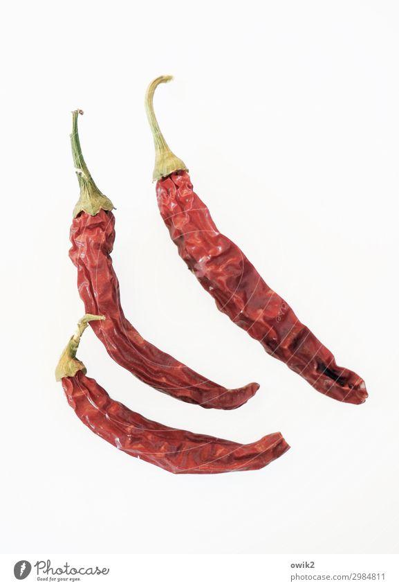Chillen Chili Peperoni dünn Zusammensein trocken rot Scharfer Geschmack 3 Farbfoto Innenaufnahme Textfreiraum rechts Textfreiraum unten Totale