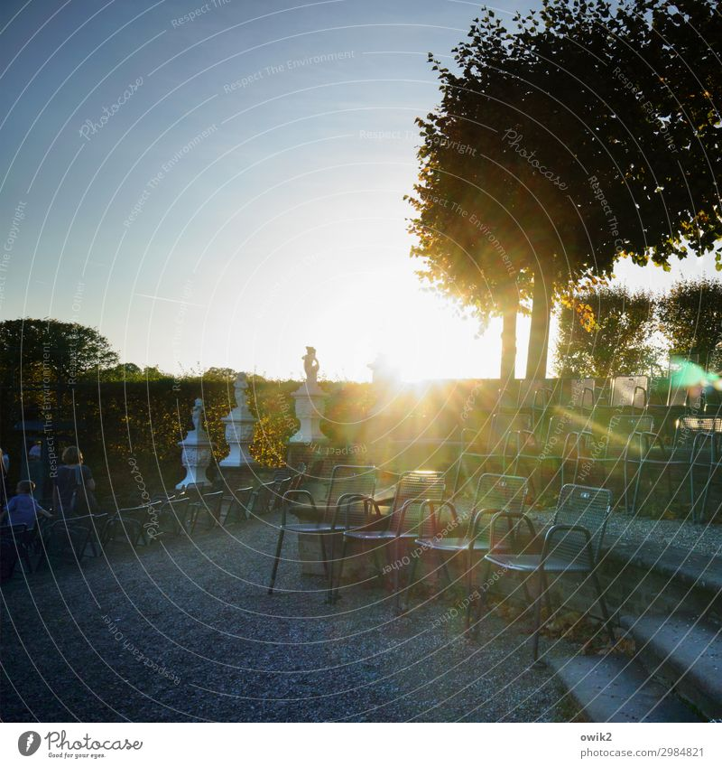 Platz da Kunstwerk Skulptur Umwelt Natur Landschaft Pflanze Wolkenloser Himmel Horizont Sonne Herbst Schönes Wetter Baum Park Herrenhäuser Gärten Treppe Stuhl